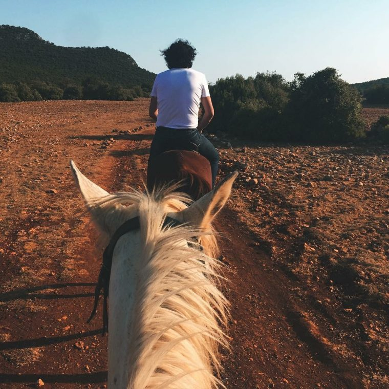 Kaş Tatil Rehberi   Kaş At Çiftliği