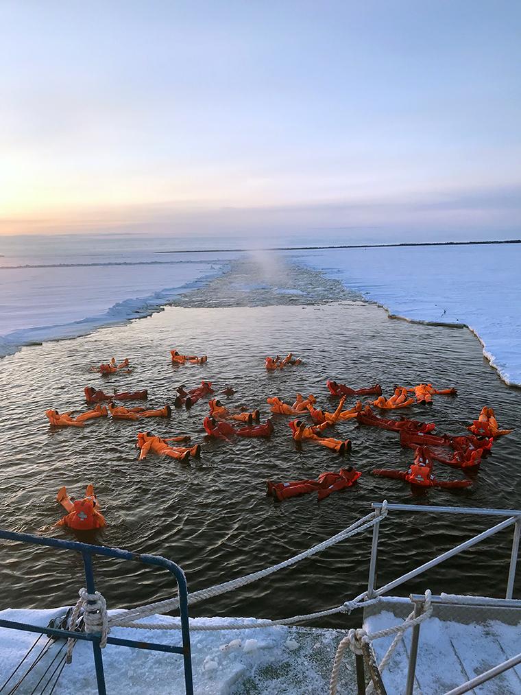 Laponya: Alternatif Bir Deneyim