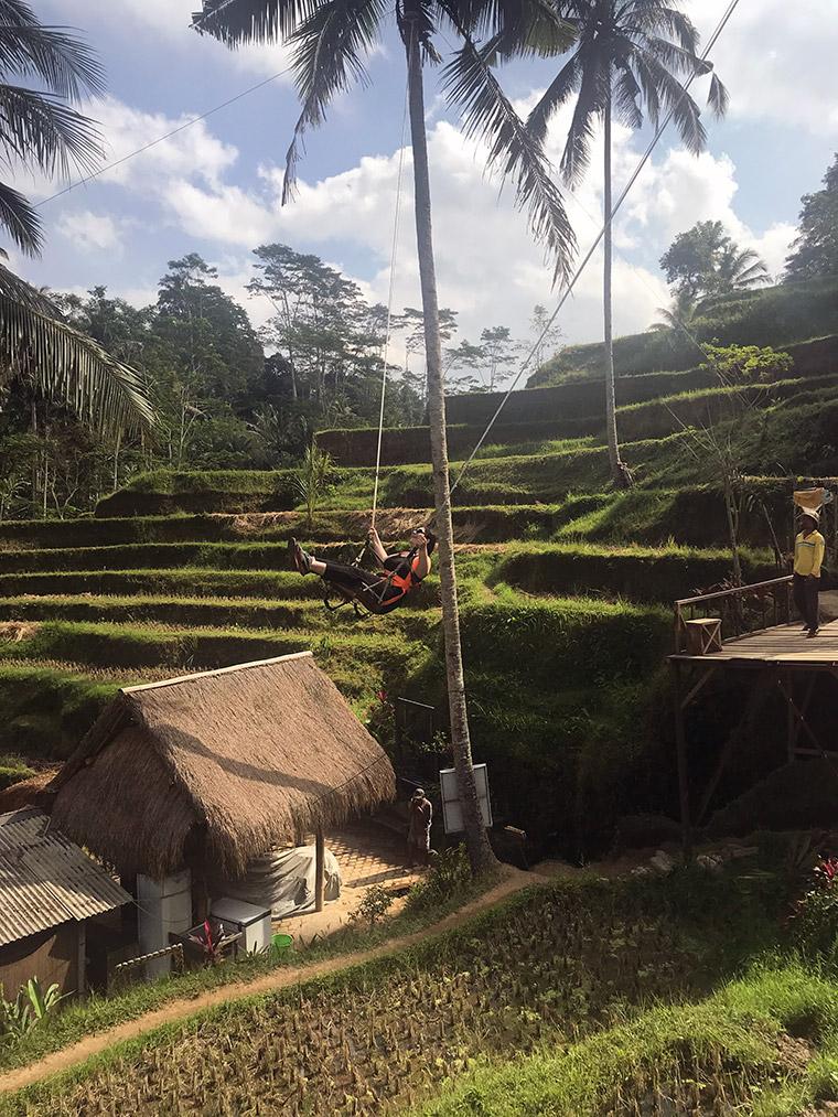 Bali Adası - Ubud Tegalalang Pirinç Tarlası
