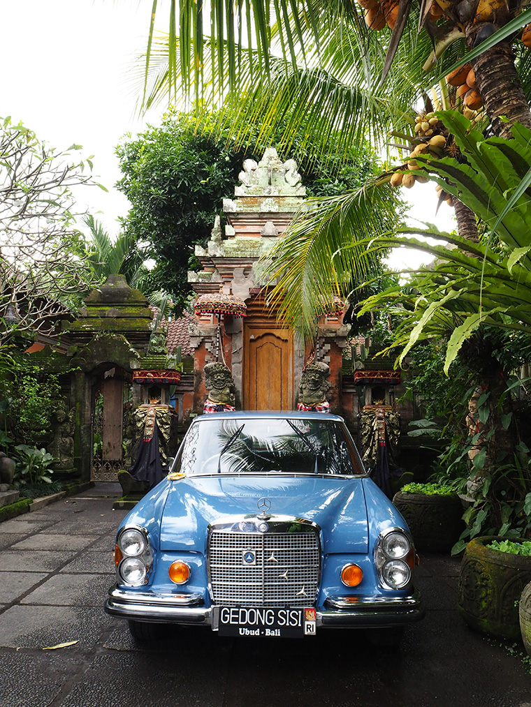 Bali Adası - Ubud Şehir Merkezi