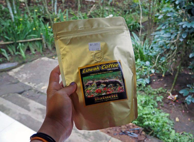 Bali Adası - Ubud Luwak Coffee