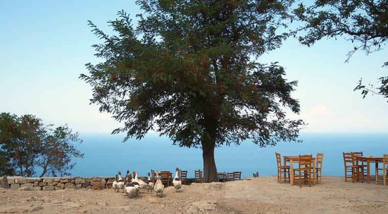 Gökçeada: Kekik Kokulu Rüzgarlı Ada | Köyleri - Tepeköy