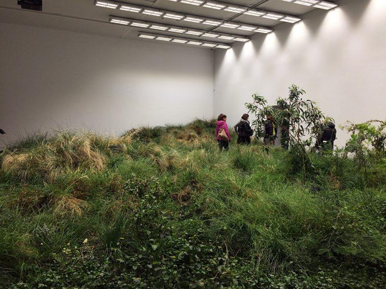 Venedik Mimarlık Bienali 2018 | Avustralya Pavilyonu, Giardini