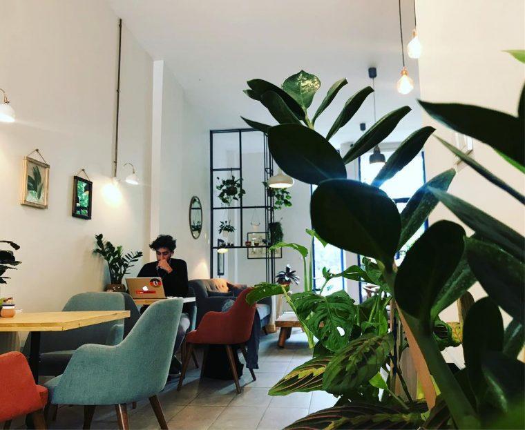 Roots Café & Botanique