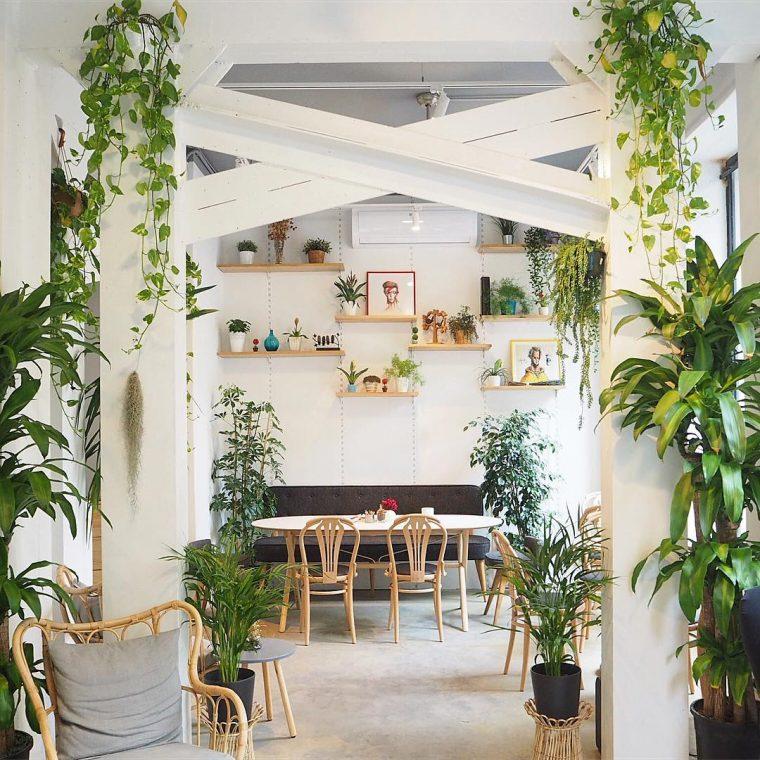 İstanbul'un Yaratıcı Çiçek Dükkanları ve Botanik Kafeleri | Tiyop Cafe & Bistro